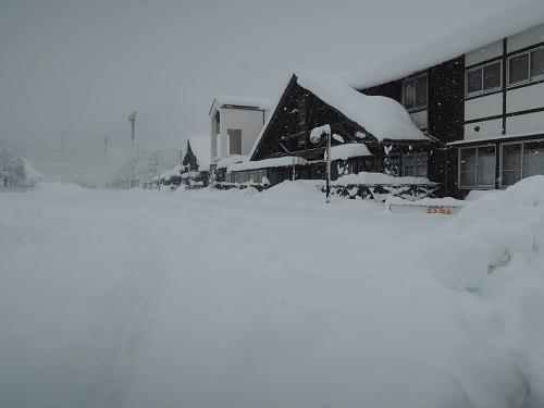 「春分の日」の大雪、なんとか開店しております。_b0206037_13474473.jpg