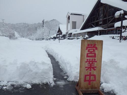 「春分の日」の大雪、なんとか開店しております。_b0206037_1352079.jpg