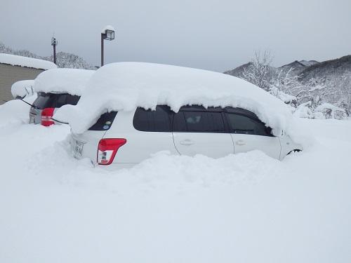 「春分の日」の大雪、なんとか開店しております。_b0206037_13555961.jpg