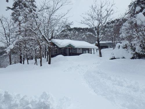 「春分の日」の大雪、なんとか開店しております。_b0206037_13584250.jpg