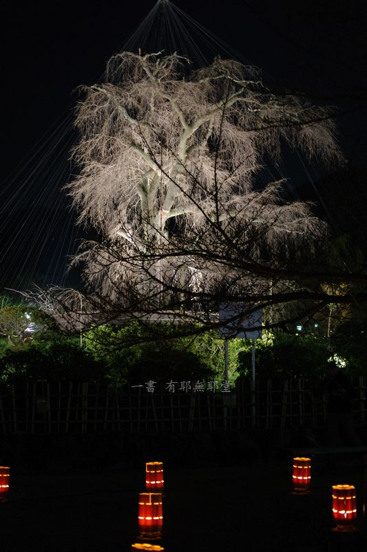 京都東山・花灯路_a0157263_07381457.jpg