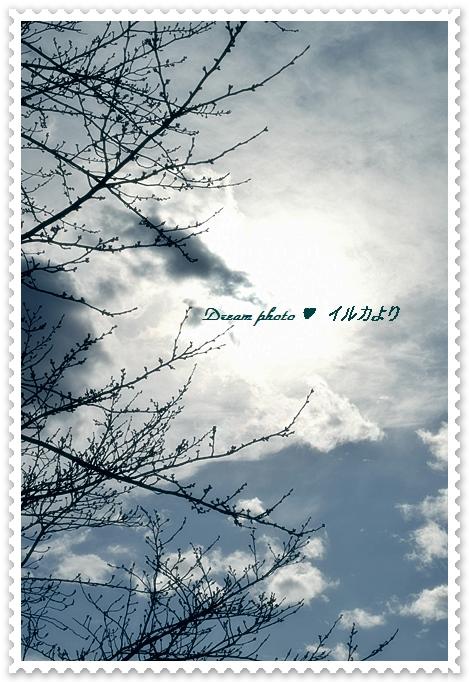 f0304384_23241355.jpg