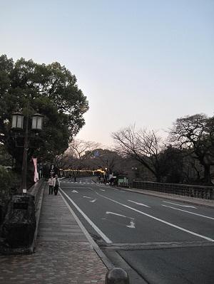熊本城の桜_b0228113_12103753.jpg
