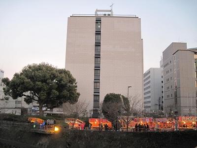 熊本城の桜_b0228113_12113497.jpg