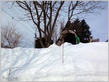雪が減ってな〜い!_e0326953_9432083.jpg
