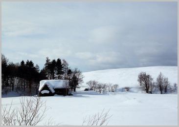 雪が減ってな〜い!_e0326953_9455465.jpg