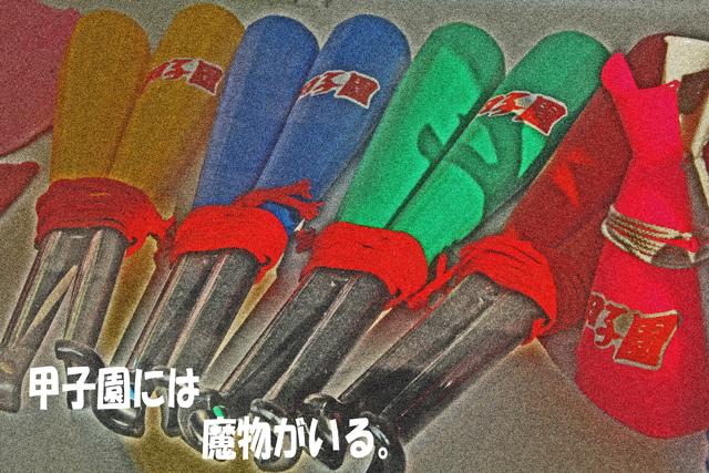 日本文理、初戦敗退!_a0267861_2084244.jpg
