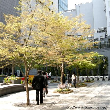 Sant Pau at 日本橋_d0227799_1616040.jpg