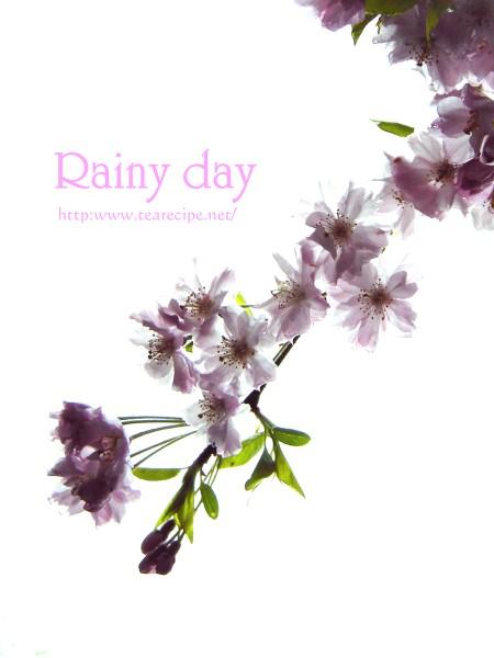雨の日のスナップ   の 模倣・・・のつもり・・・。_d0227799_1616868.jpg