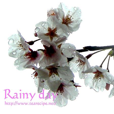 雨の日のスナップ   の 模倣・・・のつもり・・・。_d0227799_1616981.jpg