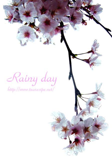 雨の日のスナップ   の 模倣・・・のつもり・・・。_d0227799_1616998.jpg