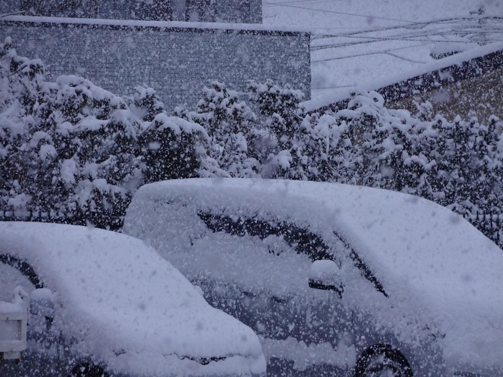 OH雪 うんざり_c0111229_19112242.jpg