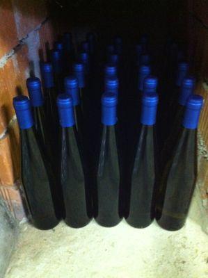 白ワインの瓶詰め_d0136540_614417.jpg