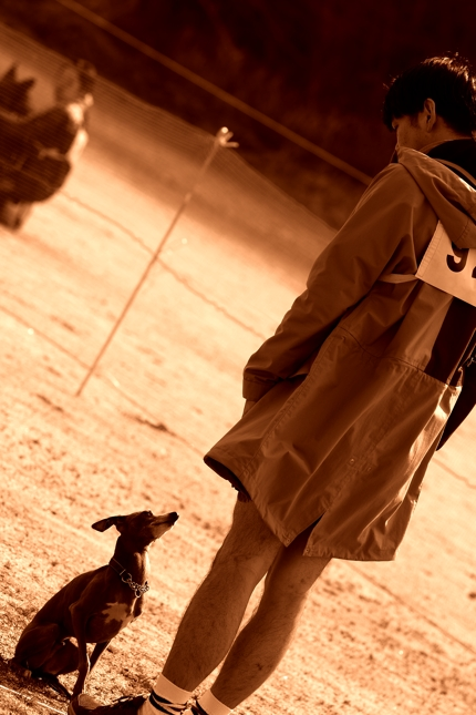 P.D 春季 西日本服従訓練協議会 ~ 小鉄 ~ _b0213543_21571094.jpg