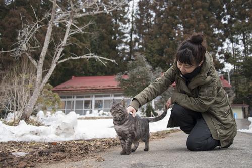 猫日和 1:はじめまして_a0180681_273263.jpg
