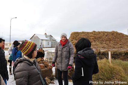 アイスランド・エアウエイブス(15) ムームのバス・ツアー、地熱発電所や名物エビ料理も!_c0003620_2155224.jpg