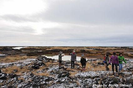 アイスランド・エアウエイブス(15) ムームのバス・ツアー、地熱発電所や名物エビ料理も!_c0003620_2161021.jpg
