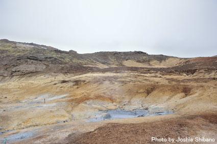 アイスランド・エアウエイブス(15) ムームのバス・ツアー、地熱発電所や名物エビ料理も!_c0003620_218333.jpg