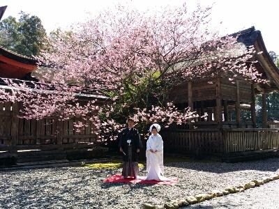 春色(о´∀`о)_b0240634_199320.jpg