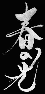 京都東山・花灯路_a0157263_16090229.jpg