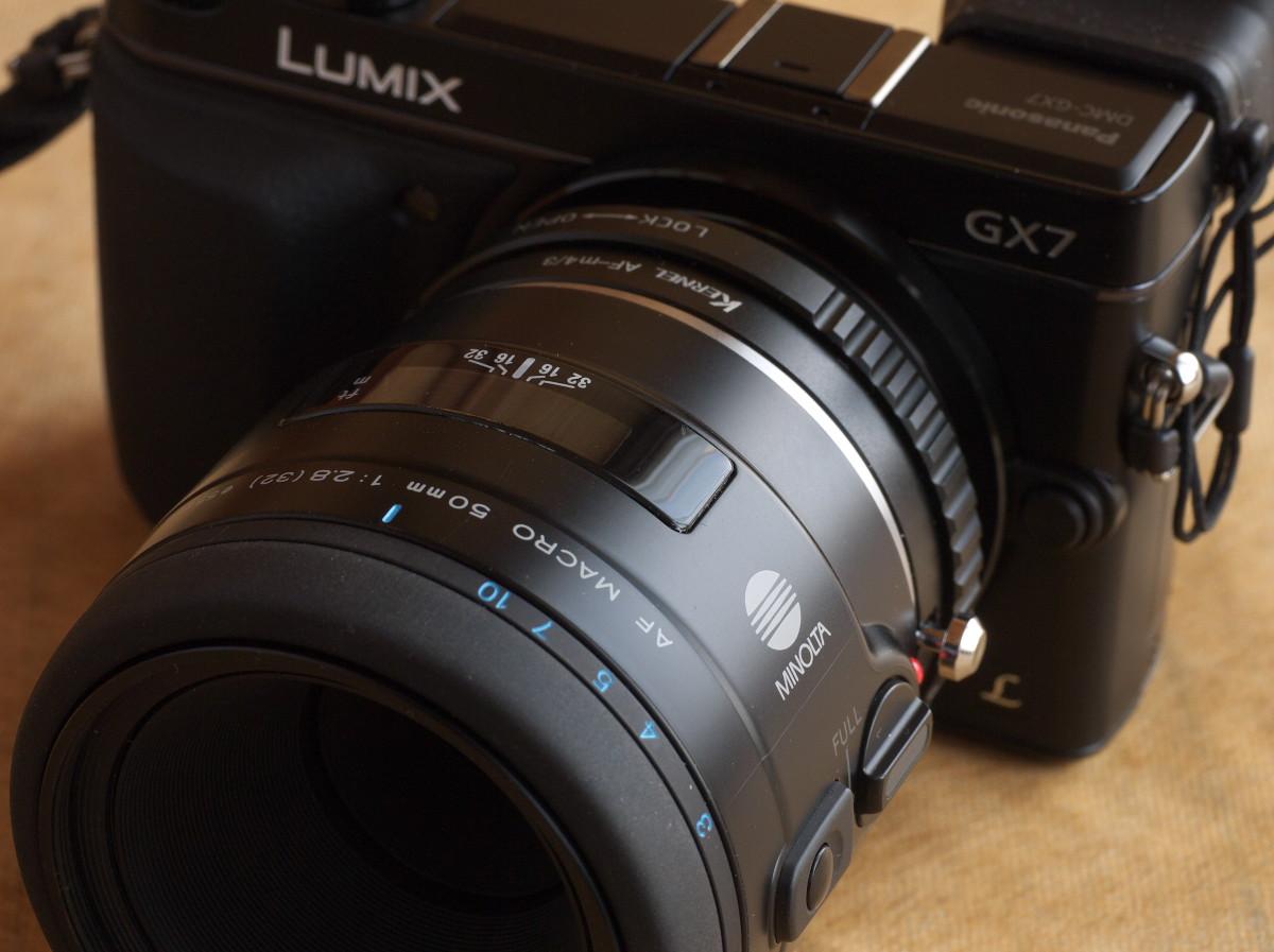 MINOLTA AF 50mm F2.8 Macro(New)  鈴蘭水仙_b0161171_729932.jpg