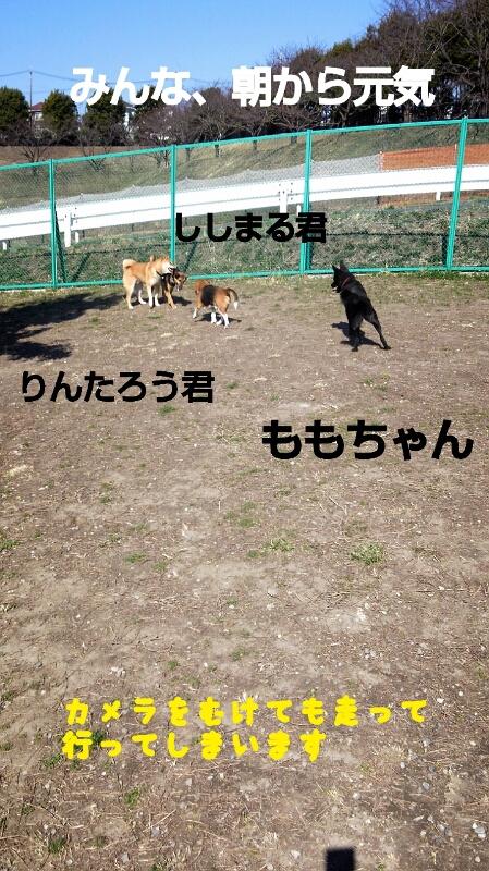 f0230380_19325457.jpg