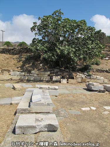 ティノス島のポセイドンとアンピトリテーの祭壇_c0010496_20042981.jpg