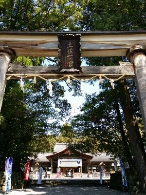 土佐神社にて。_b0240634_992865.jpg