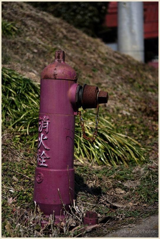 「ドトル会」Fire hydrant  X-E1_e0063851_16381961.jpg