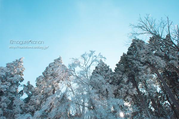 Last Winter③~Snow*album_b0197639_21131896.jpg