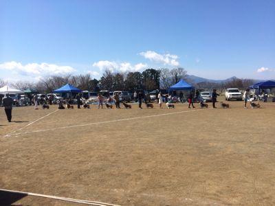 コリークラブ神奈川支部展 会場変更について_f0126965_4171257.jpg