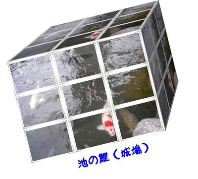 d0249109_17534393.jpg
