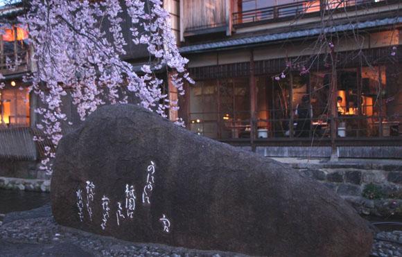 14桜始まる3 祇園白川_e0048413_21451042.jpg