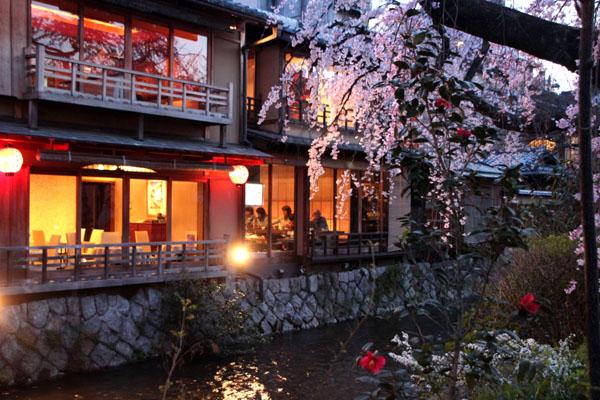 14桜始まる3 祇園白川_e0048413_21452146.jpg