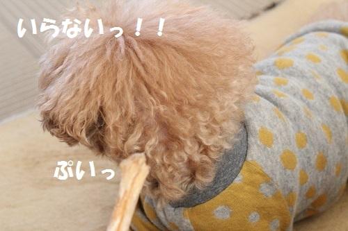 b0197418_20493895.jpg