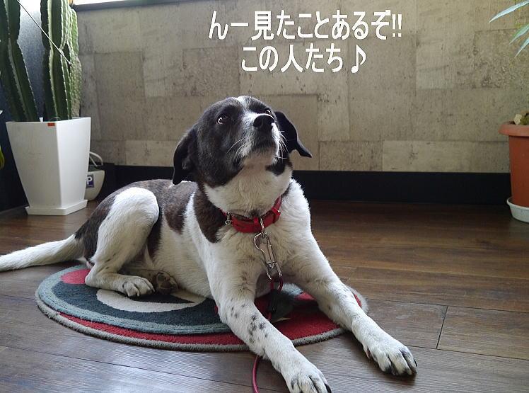 4/27 モタサン★エントリー開始!!_f0178858_20283520.jpg