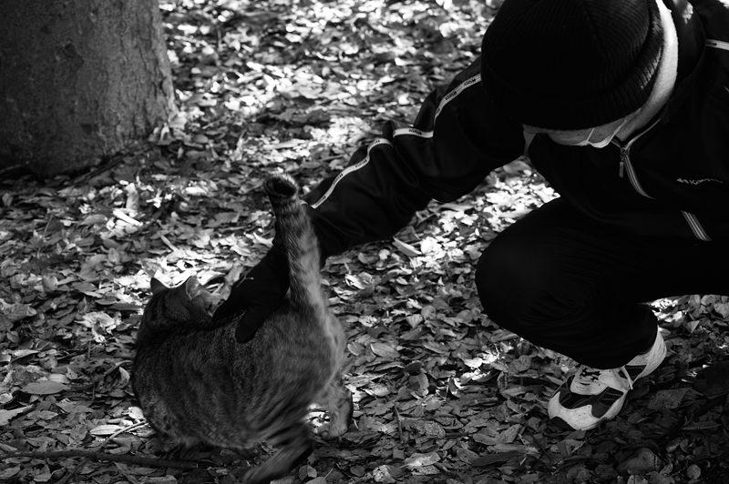 町角ニャンコ・仲良しのお爺さんと_f0032011_2005814.jpg
