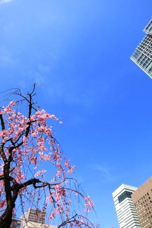 静かな春の日差し_a0259130_22354117.jpg