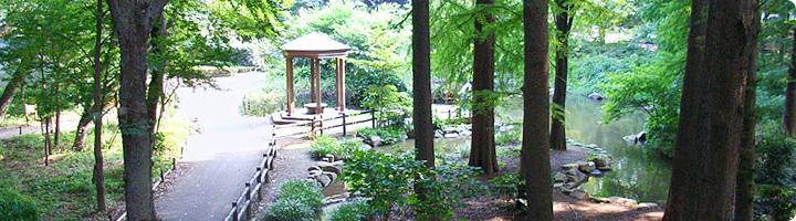 公園を探して_f0322193_18411827.jpg