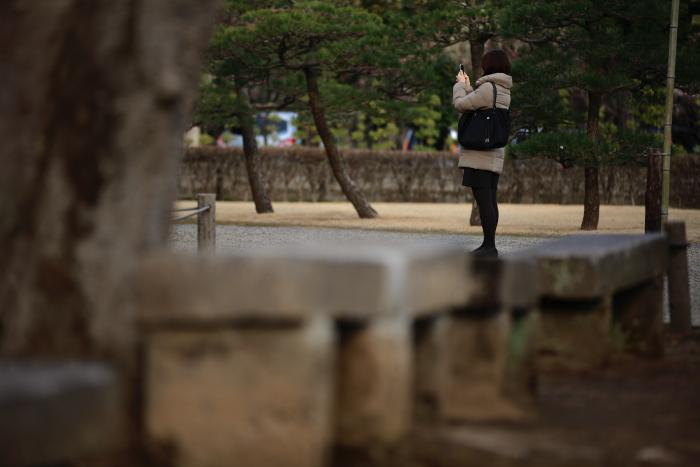 水前寺成趣園内の出水神社_e0135098_17552914.jpg