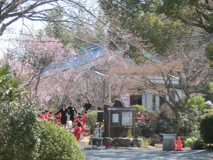 平成25年度楽生保育園寿光幼稚園卒園式 みんな生まれてくれてありがとう_b0188106_00491057.jpg