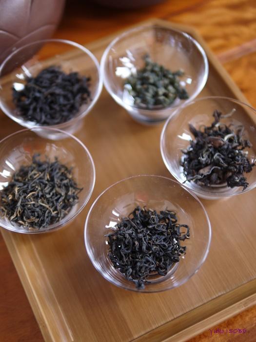 中国茶5種のみ比べとご感想_a0169924_12472263.jpg