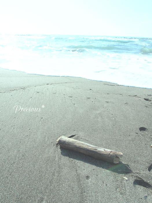 春の海。_c0101341_20301457.jpg