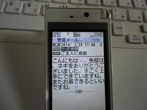 d0138650_1205062.jpg