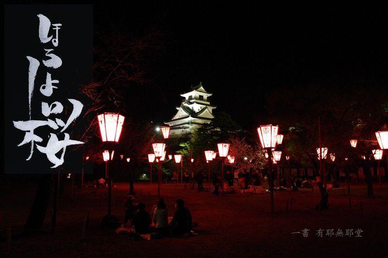 高知城の夜桜_a0157263_17535888.jpg