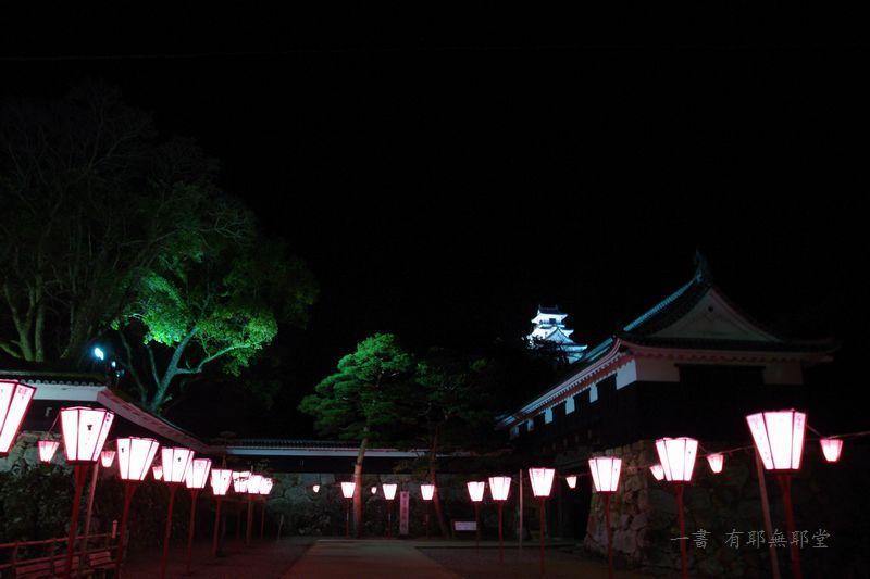 高知城の夜桜_a0157263_17540145.jpg