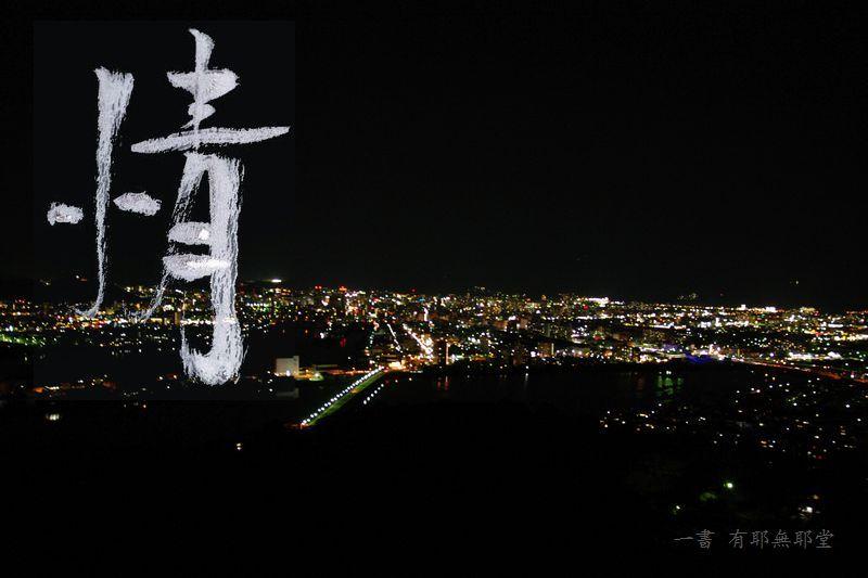 高知城の夜桜_a0157263_17540611.jpg