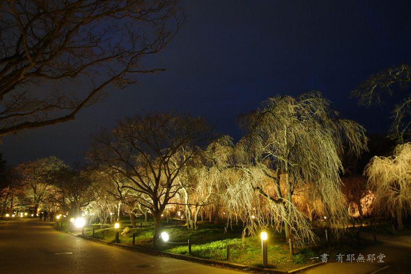 京都府立植物園 2014夜桜_a0157263_22312971.jpg