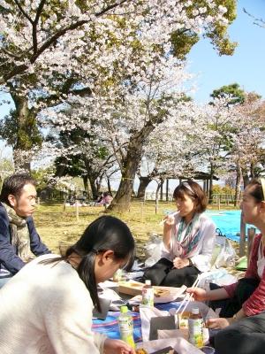 2014年 お花見!!_f0203164_1136410.jpg