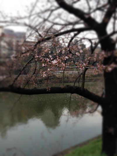 東京校 3月のソーイング講座_d0091671_9135735.jpg